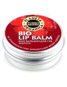 Agafia's 100 Herbs Hair Balm Birch Doctor 500ml